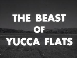 yuccaflats7