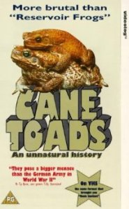 canetoad1