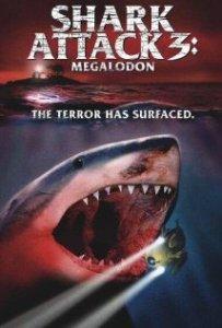 sharkattack31