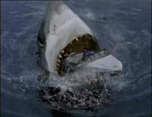 sharkattack32