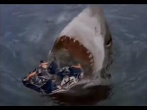 sharkattack33