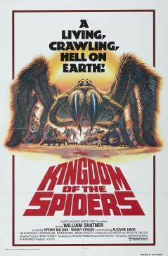 kingdomspiders1