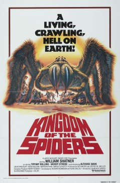 kingdomspiders1
